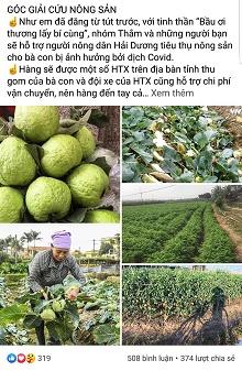 Hà Nội: Nhiều doanh nghiệp, cá nhân hưởng ứng giải cứu nông sản tại Hải Dương