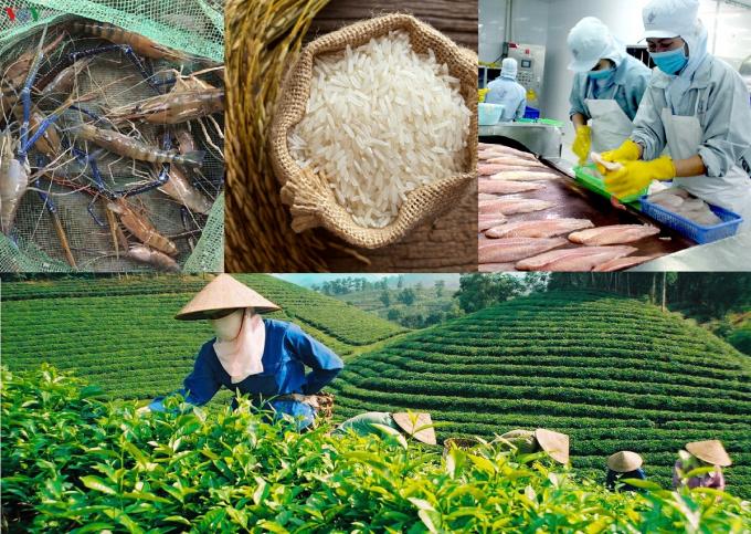 Nông sản Việt Nam trong mùa dịch: Trong nước khó khăn, thăng hạng trên trường quốc tế
