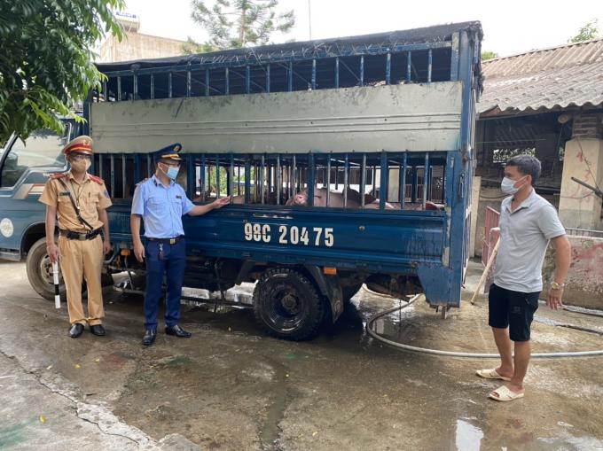 Bắc Giang: Vận chuyển 35 con lợn không được kiểm dịch, lái xe bị phạt 7 triệu đồng