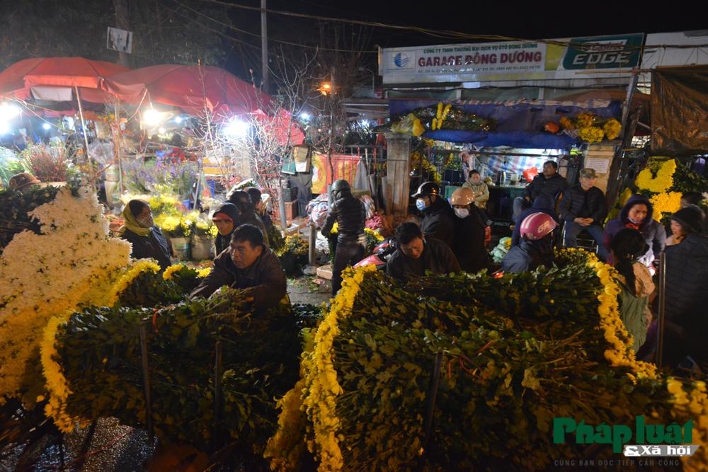 Chợ hoa Quảng An nhộn nhịp đêm mùng 1 tháng Chạp