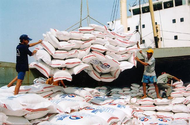 """Gạo Việt xuất khẩu vượt ngưỡng 500 USD/tấn: """"Cẩn tắc vô áy náy"""""""