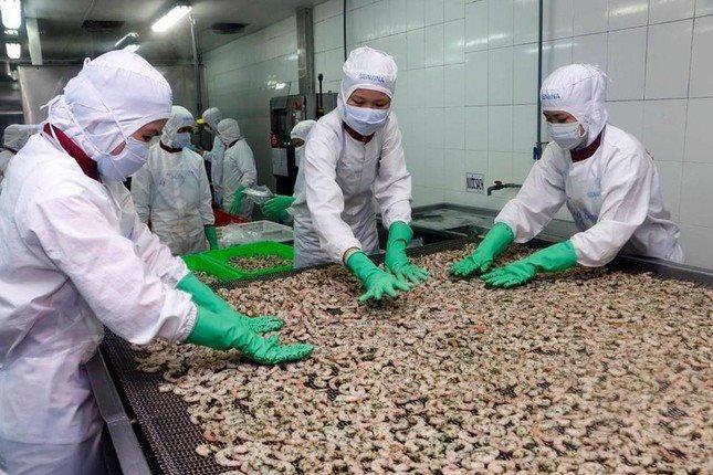 Giữa đại dịch xuất khẩu tôm sang Australia tăng 93%