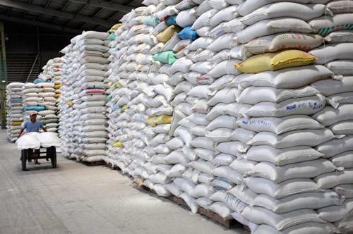 Cấp hơn 953 tấn gạo cứu đói cho nhân dân hai tỉnh Cao Bằng, Sơn La