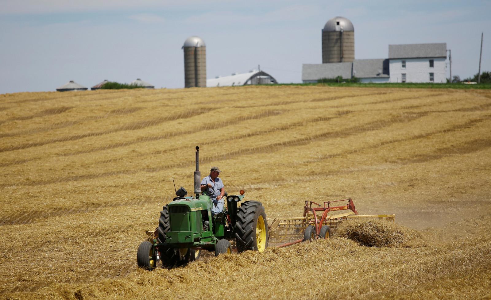 FAO: Giá thực phẩm toàn cầu phục hồi trong tháng 8
