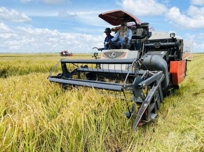Bình ổn giá phân bón: Nên giải quyết căn cơ vấn đề đầu ra nông sản?