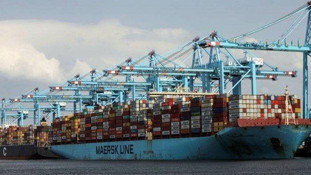 Cước vận tải biển chưa chạm đỉnh và còn tăng