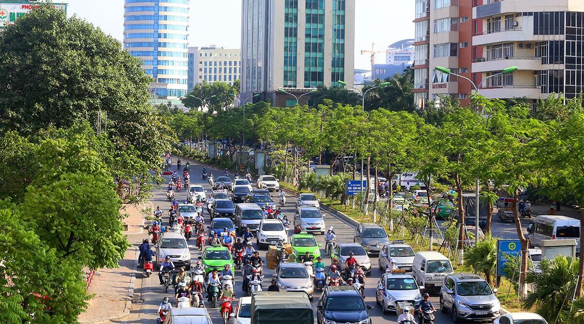 Năm 2021: Hà Nội sẽ trồng 300 nghìn cây xanh