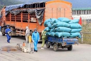 Hà Nội: Tạo mọi điều kiện cho lưu thông hàng hóa, thúc đẩy tiêu thụ nông sản