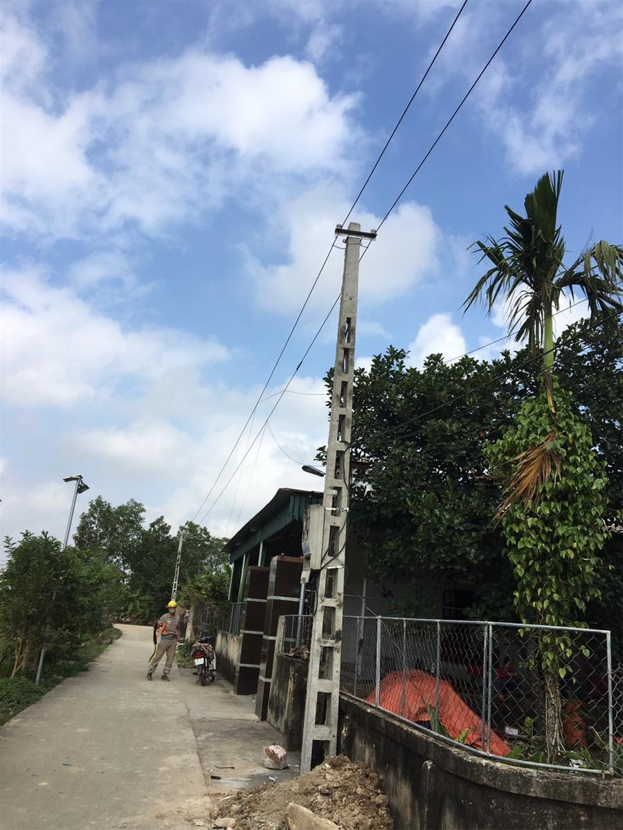 Cột điện mới được trồng, đường dây hạ thế được nâng cấp an toàn hơn.