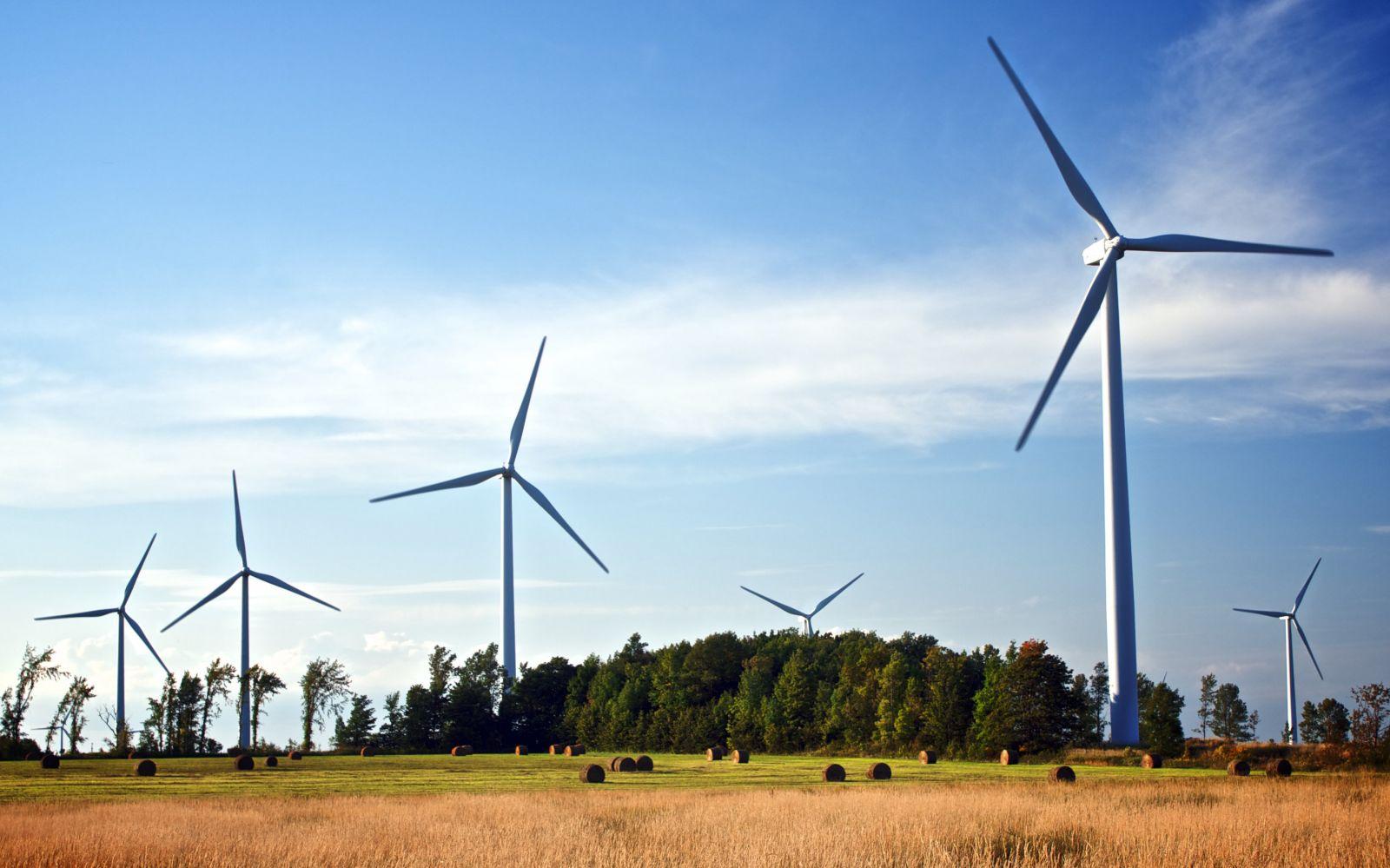 ADB ký khoản vay xanh đầu tư cho dự án trang trại điện gió