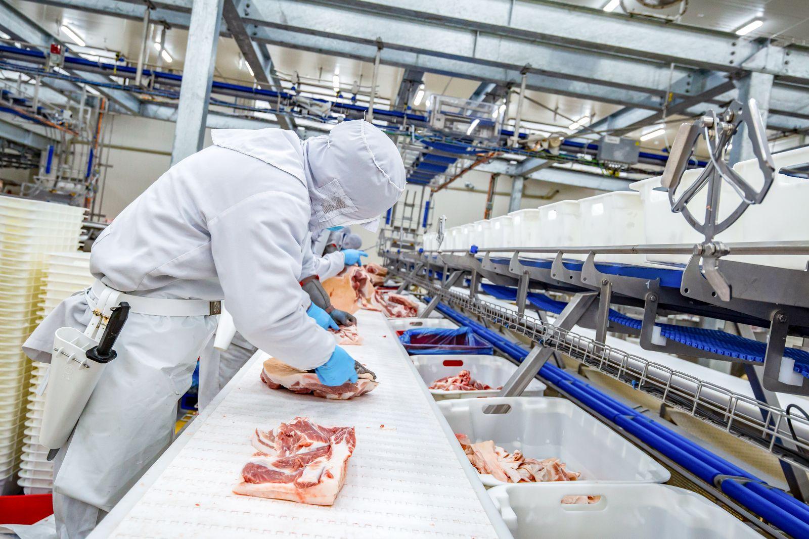 Dây chuyền chế biến thịt mát MEATDeli