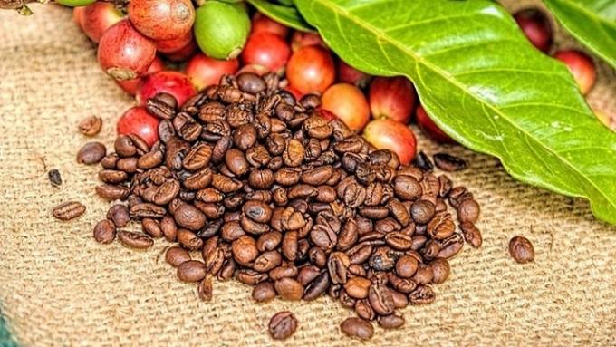 Giá cà phê hôm nay 19/3: Giảm nhẹ sau chuỗi tăng