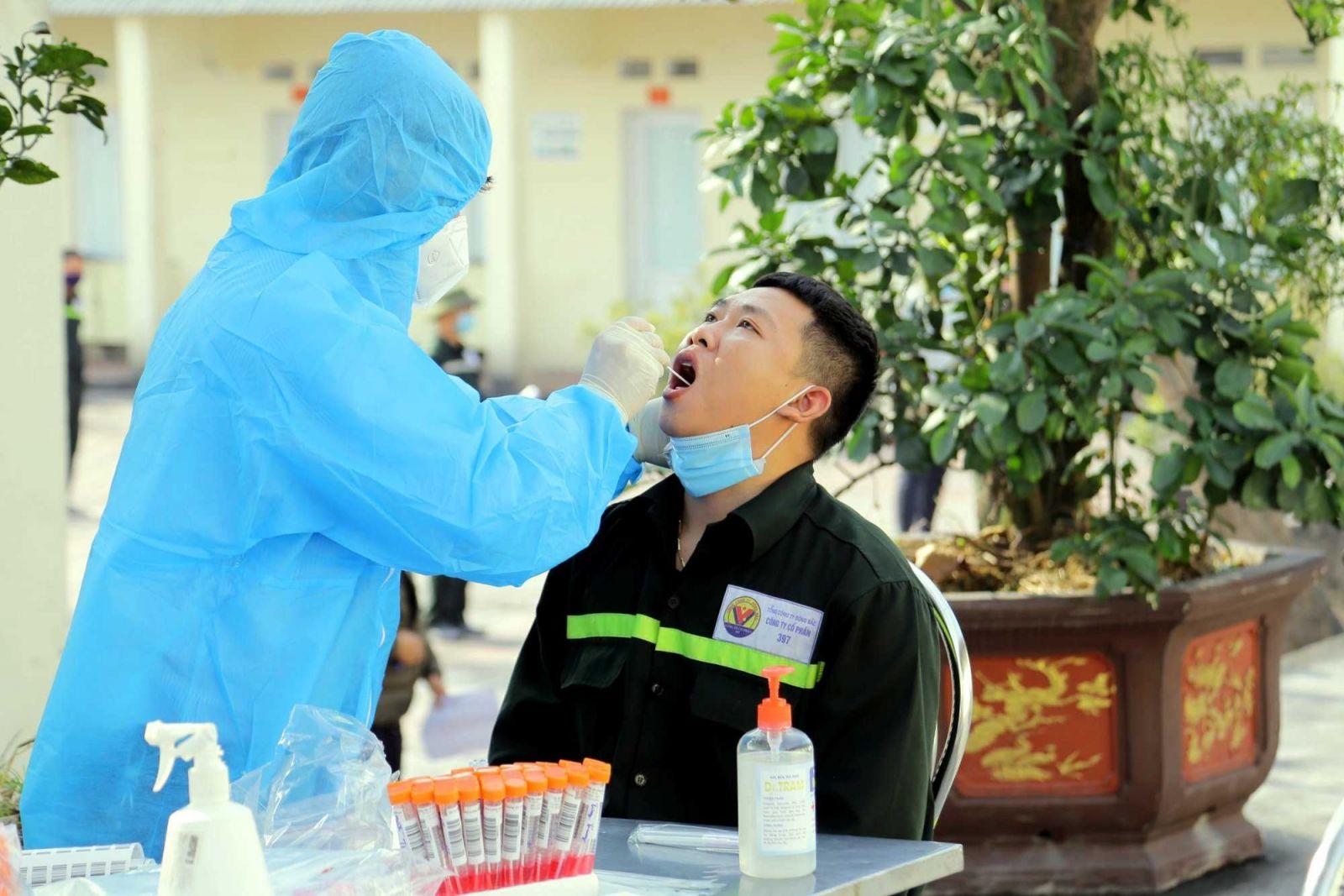 Hơn 13.800 thí sinh dự thi vào lớp 10 ở Quảng Ninh được lấy mẫu xét nghiệm Covid-19.