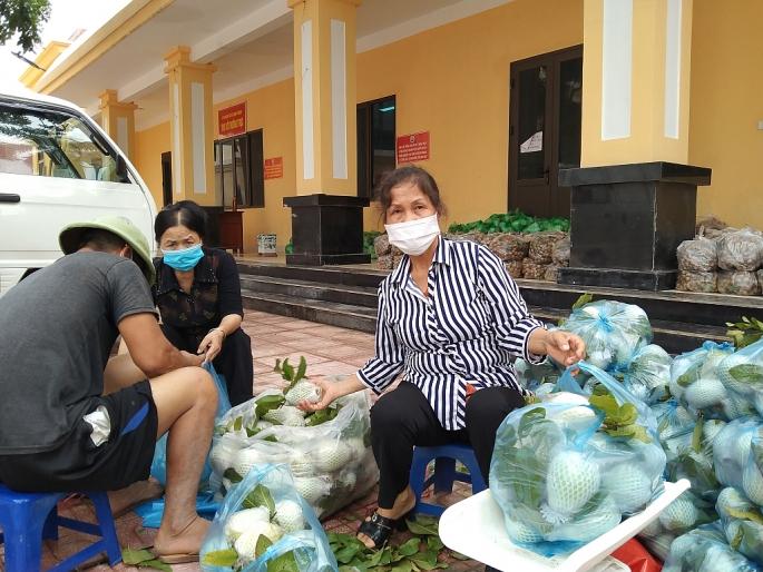 Tổ hỗ trợ tiêu thụ nông sản xã Song Phương đang đóng từng túi ổi 5kg để giao cho khách.