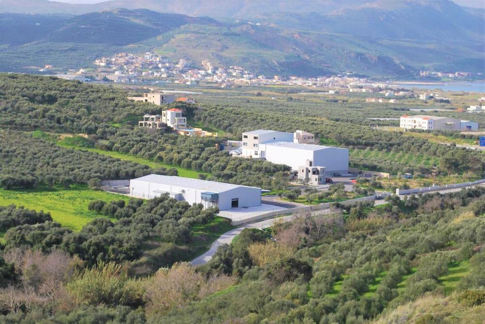 Công ty Terra Creta có trụ sở tại đảo Crete (Hy Lạp) bao quanh là những cánh đồng oliu bạt ngàn, cho ra loại dầu oliu nức tiếng khắp nơi.