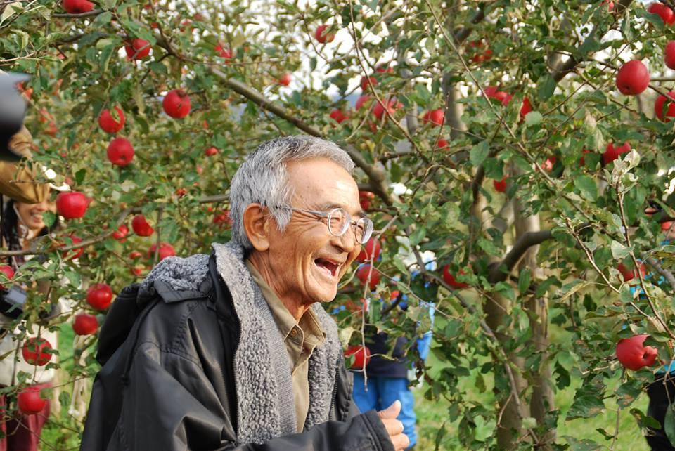 Akinori Kimura hạnh phúc trong vườn táo trĩu quả của ông