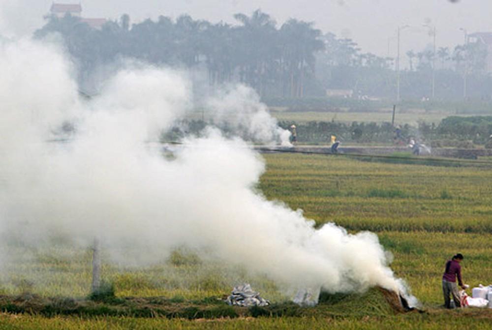 Đốt rơm rạ làm gia tăng ô nhiễm môi trường không khí tại Hà Nội và nhiều tỉnh phía Bắc. (Ảnh minh họa)