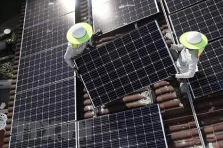 Thị trường điện Mặt Trời có nhiều yếu tố hấp dẫn giới đầu tư. (Ảnh: TTXVN)