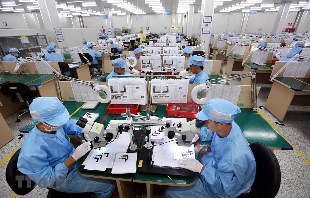Doanh nghiệp làm thủ tục xuất khẩu trung bình mất 38,4 giờ. ( Ảnh minh họa)