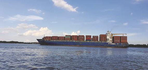 Xuất khẩu của Việt Nam đã tăng bình quân 15,02%/năm, gấp gần 5,6 lần so với bình quân của thế giới.