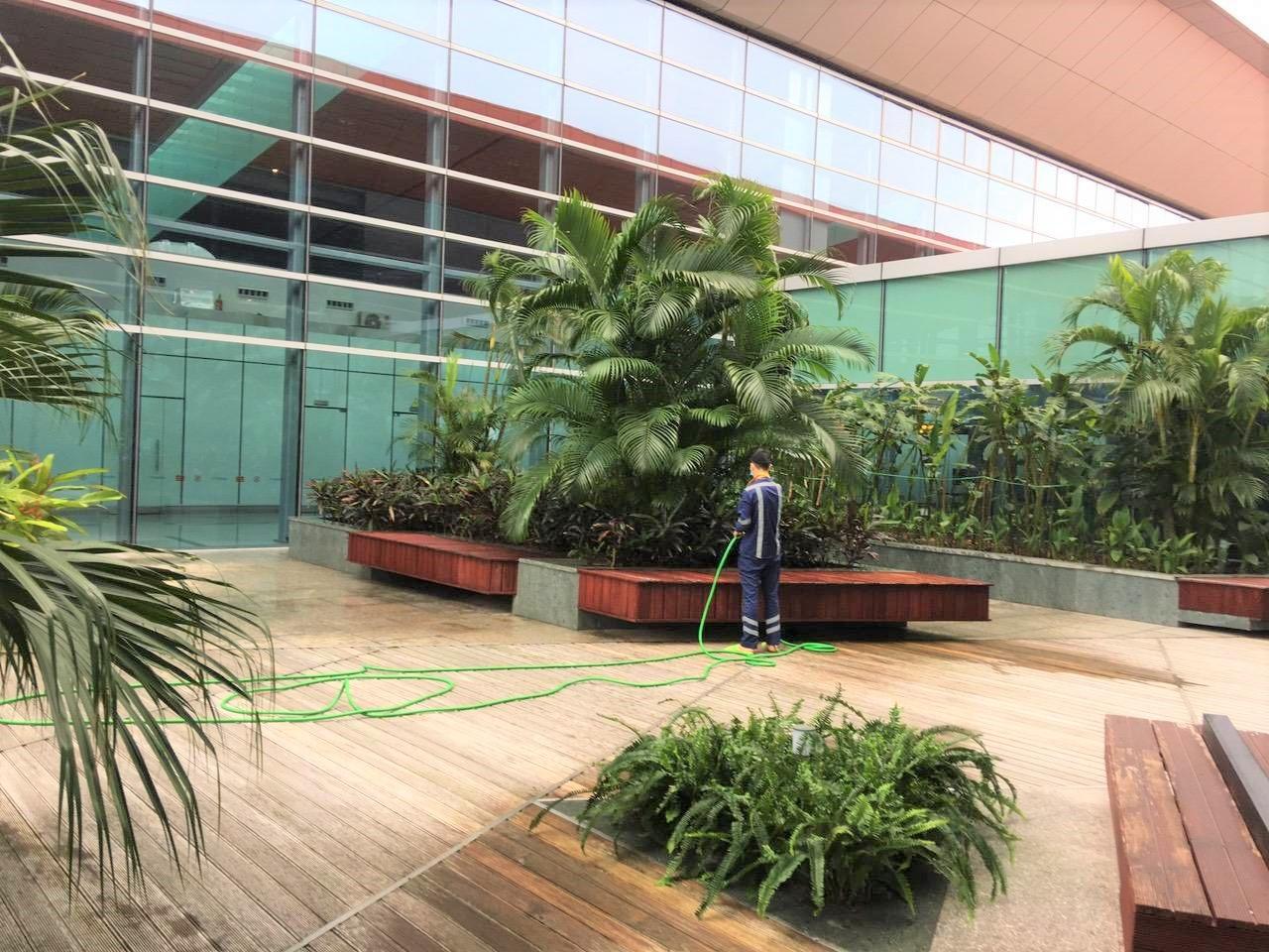 CBNV cách ly tại sân bay vẫn chủ động bảo trì bảo dưỡng máy móc, cây xanh để sẵn sàng cho ngày mở cửa