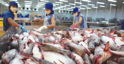 Việt Nam xuất khẩu 4,8 tỷ USD hàng hóa vào EU nhờ EVFTA . Ảnh minh họa