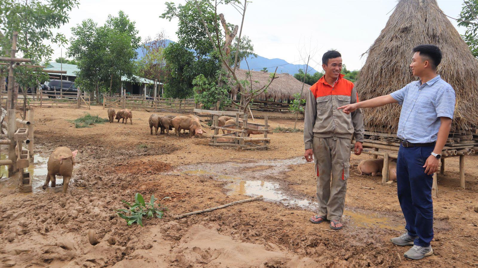 Anh Tú (áo xanh) thường xuyên đến trang trại để tham quan và trò chuyện cùng với những người chăn nuôi tại đây.
