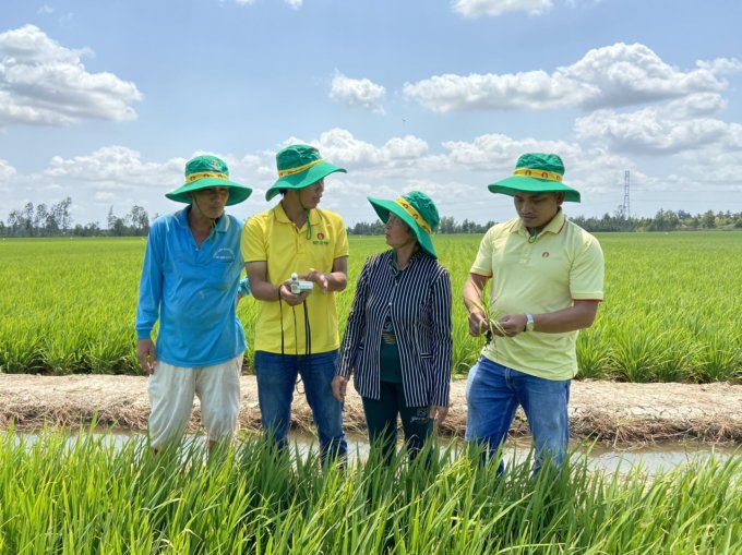 Cục trưởng Cục BVTV Hoàng Trung nhấn mạnh, việc giá phân bón tuy có ảnh hưởng tới sản xuất nông nghiệp, nhưng không đến mức vì giá phân bón tăng mà dẫn tới định trệ hay phải dừng sản xuất. Ảnh: DCM
