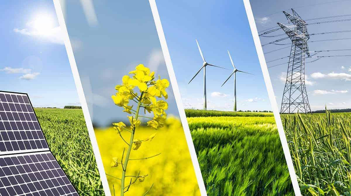 Nhiều doanh nghiệp địa ốc mạnh tay chuyển sang lĩnh vực năng lượng tái tạo.