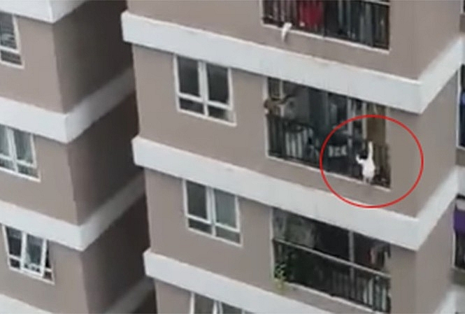 Hình ảnh bé gái trèo qua lan can được người dân ghi lại và kêu cứu (ảnh cắt từ clip)