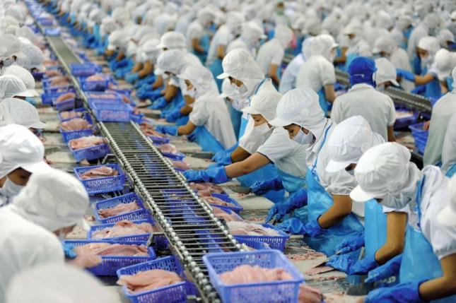 Tuân thủ nguyên ngặt các quy định về phòng chống lây lan dịch bệnh covid-19, Cty XNK V.A ổn định sản xuất.