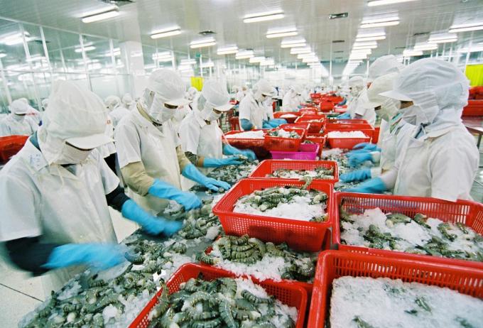 Theo Bộ Kế hoạch - Đầu tư, ngành chế biến thủy sản đang gặp nhiều khó khăn, nhất là các quy chế xử phạt liên quan tới vấn đề môi trường.