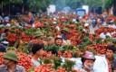 Bắc Giang đề nghị được hỗ trợ lưu thông hàng hóa và tiêu thụ nông sản từ các tỉnh, thành phố