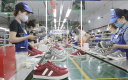 Xuất khẩu giày dép sang EU tăng mạnh nhờ EVFTA