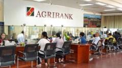 Cập nhật lãi suất ngân hàng Agribank tháng 1/2021