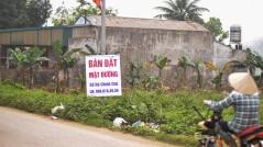 Hậu sốt đất: Nhà đầu tư rao bán cắt lỗ nhưng không ai mua