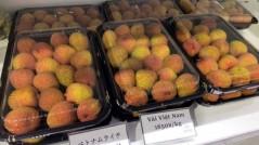 Vải thiều Bắc Giang được giá tại thị trường Nhật Bản