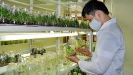 Nâng cao tiềm lực công nghiệp sinh học ngành nông nghiệp