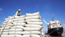 Xuất khẩu gạo 4 tháng đầu năm thu về hơn 1 tỷ USD