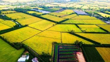 Đầu tư 388.000 tỷ đồng (giai đoạn 2021 - 2025) cho Đồng bằng sông Cửu Long
