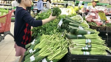 Hà Nội: Phấn đấu 100% siêu thị, trung tâm thương mại không sử dụng túi nilon khó phân hủy