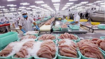 Ngành thuỷ sản Việt Nam đối diện với khó khăn khi bệnh dịch xuất hiện