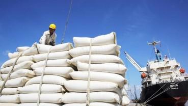 Năm 2022, Việt Nam xếp sau Thái Lan về xuất khẩu gạo toàn cầu