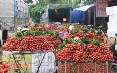 Các thành phố lớn cam kết hỗ trợ thu mua nông sản vùng dịch