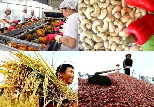 Bảo đảm nông sản lưu thông an toàn trong đại dịch