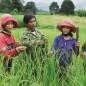 Đẩy mạnh thực hiện mục tiêu giảm nghèo đa chiều, bao trùm, bền vững đến 2030